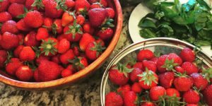 Akradi Strawberries