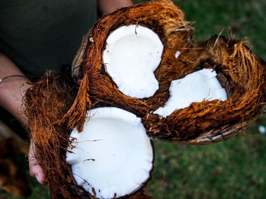 Coconut Oil: Is it good for you?